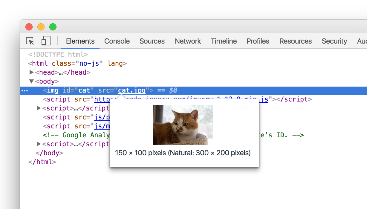 A screenshot of the Chrome Inspector inspecting a photo of a cat