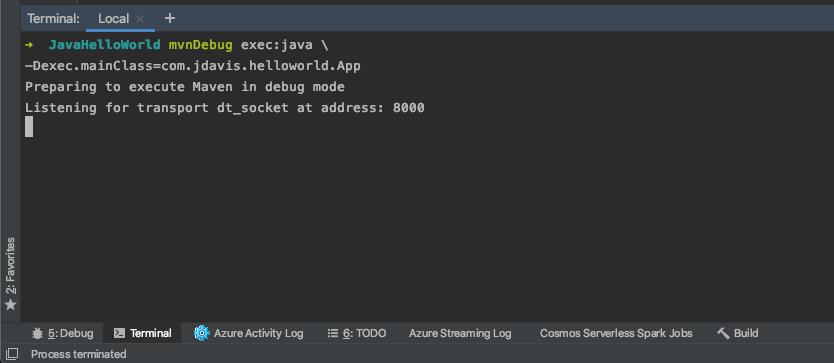 Terminal output for the execution of a Maven exec command with output 'Preparing to execute Maven in debug mode. Listening for transport dt_socket at address: 8000'